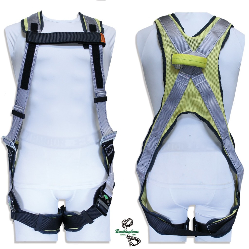 BUCKINGHAM BUCK FIT FR HARNESS WITH WEB DORSAL LOOP Large